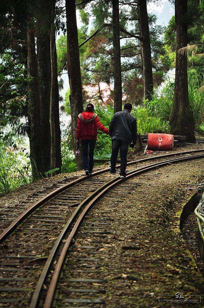嘉義.阿里山森林遊樂區 | 阿里山、奮起湖 | 一個人的小確幸