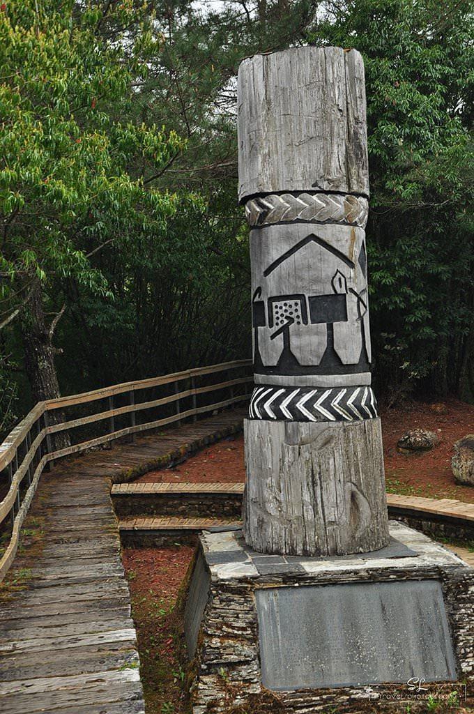 嘉義.新中橫公路 | 塔塔加、夫妻樹、神木村之旅