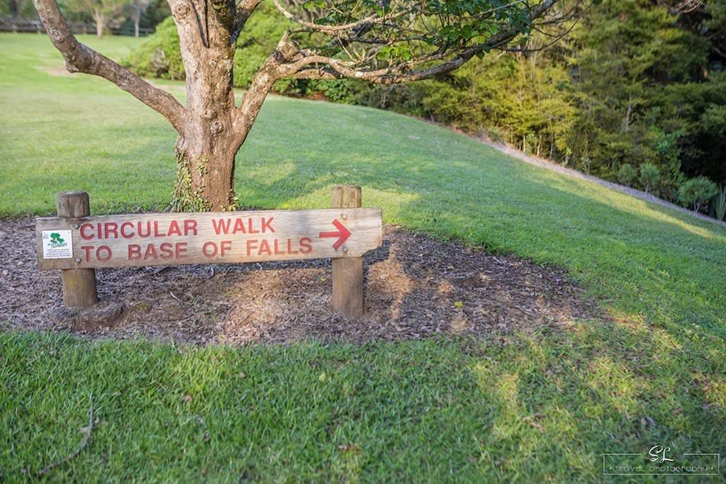紐西蘭 | 北島北 Northland | 璜加雷瀑布 Whangarei Falls