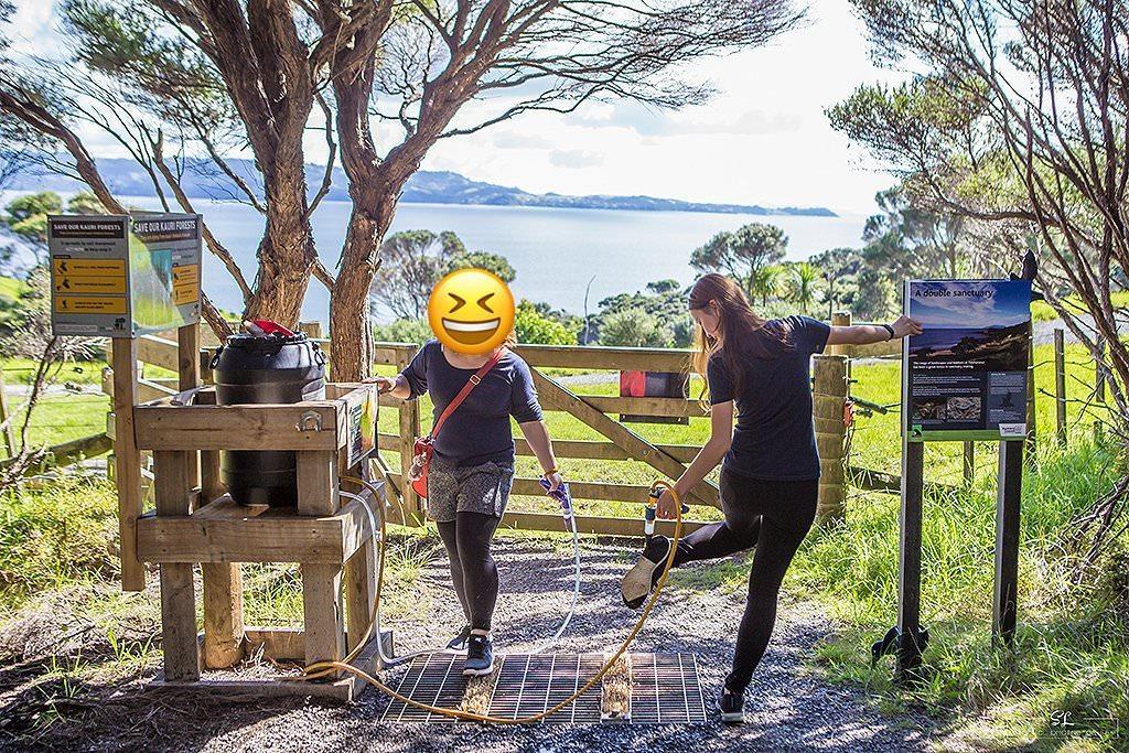 紐西蘭 | 北奧克蘭 North Auckland | Tawharanui Regional Park