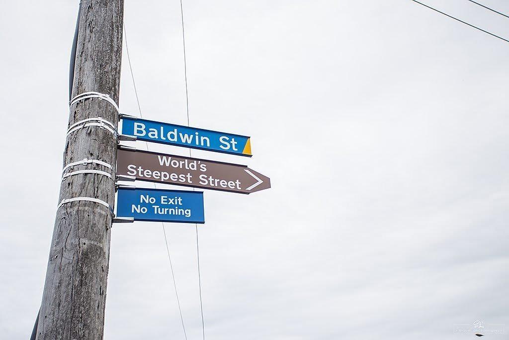 【紐西蘭】但尼丁 Dunedin | 世界最陡的斜坡-鮑德溫街 Baldwin St.