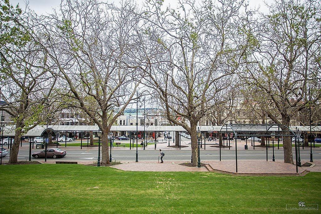 【紐西蘭】但尼丁 Dunedin | 小遊八角廣場市政廳 & 聖保羅教堂