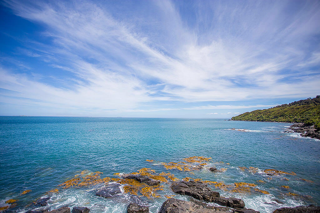 bluff-stirling-point - IMG_7335