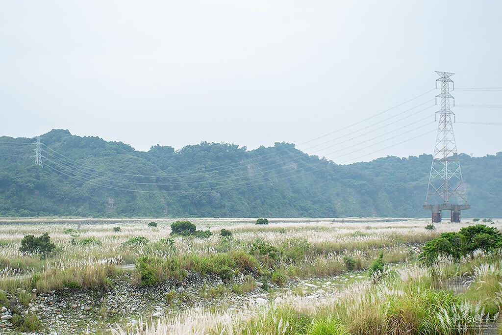 da-an-river - IMG_9236